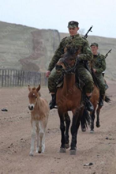 russian-border-guard-1