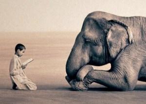 readingelephant-vi.sualize.us